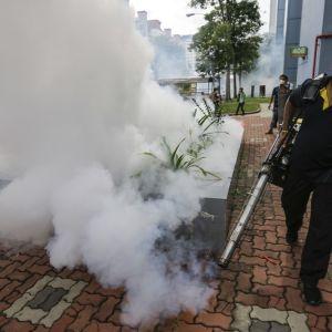 Tuholaistorjuja levittää kaasua maastoon lähellä asuinrakennuksia. Lippalakkipäisellä miehellä on hengityssuojain ja kädessään lehtipuhaltimelta näyttävä laite. Kaasu levittäytyy kuvan vasemmalla laidalla sakeana. Taustalla näkyy muita ihmisiä, joista ainakin yhdellä on myös hengityssuojain.