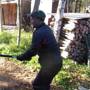 Torniolainen Pekka Aho hakkaamassa halkoja.
