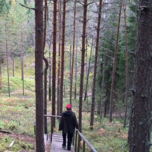 Portaita ja patikoijia luontoreitillä metsässä