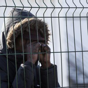 Pakolainen aidan takana.