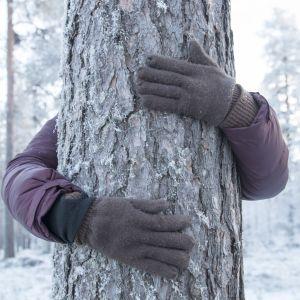 Kädet männyn rungon ympärillä