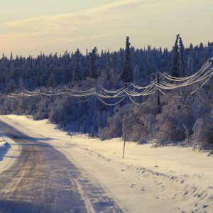 Lumisia sähköjohtoja Kittilässä.