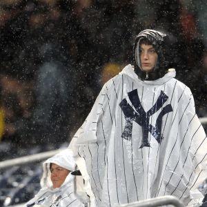 New York Yankeesin fani