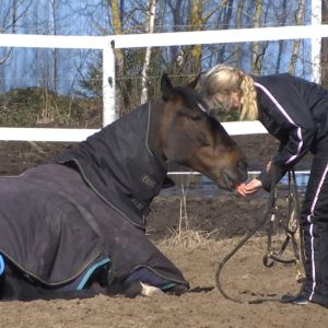 Elian Webin valmentaja Katja Melkko herättelee kevätauringosta nauttivaa huippuravuria päivän harjoituksiin.