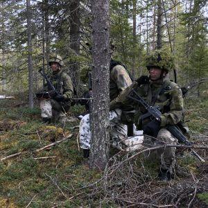 Maavoimien taisteluharjoitus Rovajärvellä