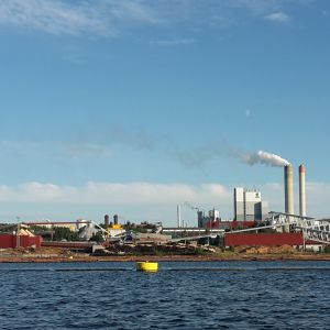 UPM:n Kaukaan tehtaat järveltä kuvattuna.