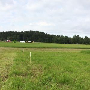 Etelä-Savon peltopäivässä, joka järjestettiin Karilan tutkimuspelloilla MikkelinRantakylässä.