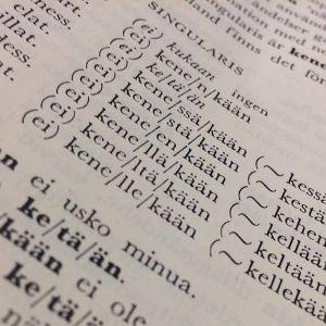Foto av sida i finsk grammatikbok