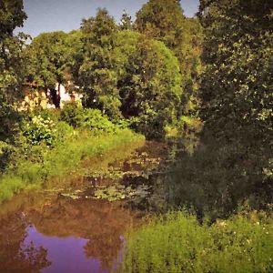 kesäinen jokimaisema