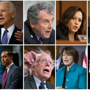 Personer som tänker kandidera för demokratiska partiets nominering.