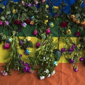 Ihmiset laskivat kukkia sateenkaarilipulle Tšetšenian seksuaalivähemmistöjä puolustaneessa mielenosoituksessa Lontoossa 2017.