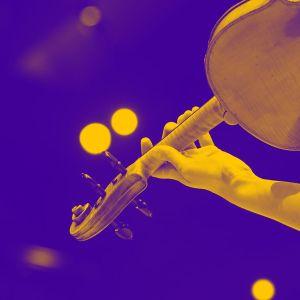 käsi joka pitää viulua