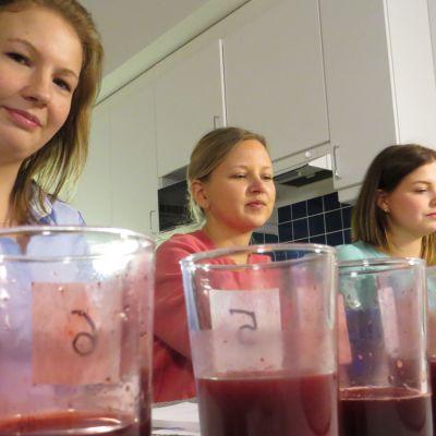 Kolme kovaa: Sini Vertainen, Kaisu Mälkiä ja Jenna Helkama.