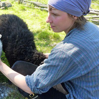 Nainen rapsuttaa lammasta