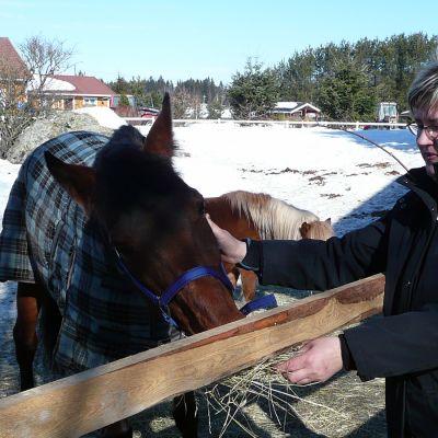 Kirsi Ilola syöttää hevosta Ilolan maatilalla
