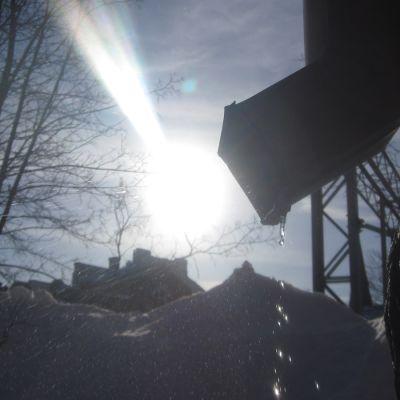 Räystäät sulavat maaliskuun auringossa