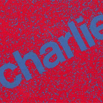 Charlies-yhtyeen vuonna 1970 ilmestyneen Julisteiden liimaajat -levyn kansitekstiä.