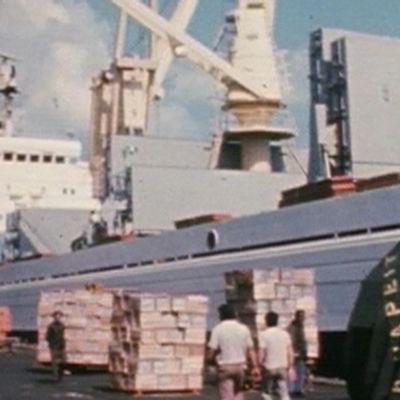 Rahtilaiva Pallas satamassa Israelissa vuonna 1981.