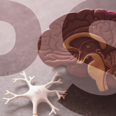 muoviset aivot