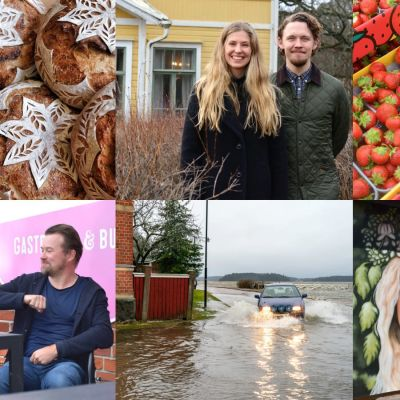 Ett collage med bilder på nyheter som lockat läsare 2020 - bild 1 brödkonst, ett par står framför ett gult hus, jordgubbar, en coronahälsning, bil kör på översvämmad väg och en man på ett fartyg.