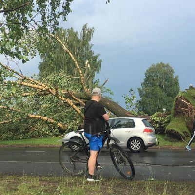 Myrskytuhoja Oulussa