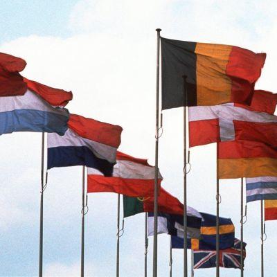 eu, europa, flaggor, medlemmar