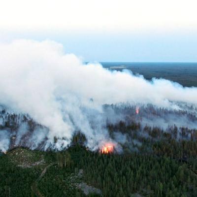 Skog som brinner i Kalajoki, i Norra Österbotten. Röken är fotograferad uppifrån.