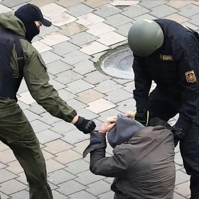 Mielenosoittaja otettiin kiinni Valko-Venäjän pääkaupungissa Minskissä järjestetyssä mielenosoituksessa 8. marraskuuta 2020.