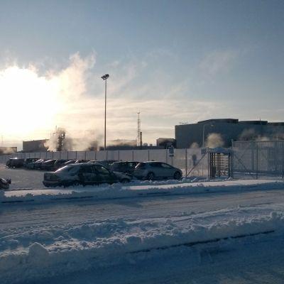 Talvivaaran kaivoksen parkkipaikka pakkaspäivänä.