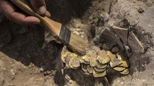 En hand putsar en hög guldmynt med en pensel.