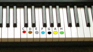 Pianotangenter med olika färger för varje ton.