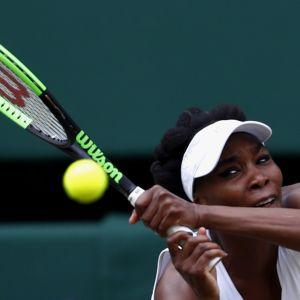 Venus Williams tennis