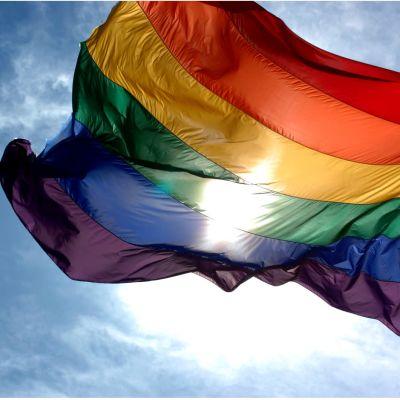 Regnbågsflaggan i motljus.