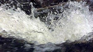 veden kuohuja