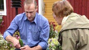 Hans-Anders Lagerström, aagot jung i trädgårdsrutan, 1998