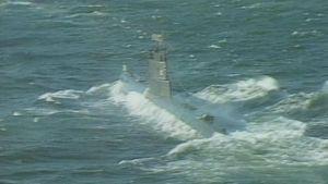Ubåt, 1981