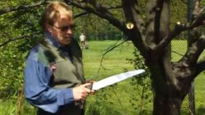 Arborist Per-Johan Bäckström sågar en lind, 2001