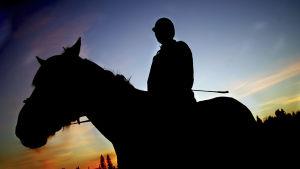 Siluetti ratsastajasta hevosen selässä