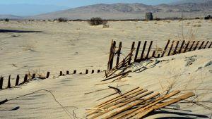 Kalifornian aavikkoa
