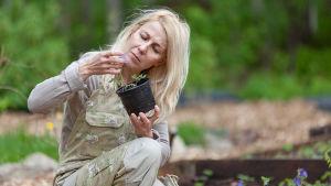 Kirjailija Mari Mörö keskittyy puutarhanhoitoon intohimolla.