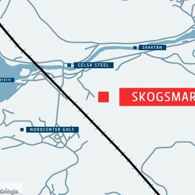 En karta som visar var skogsmark ligger i Raseborg.