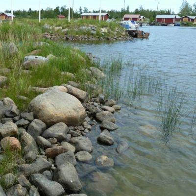 Lågt vattenstånd på Replot.
