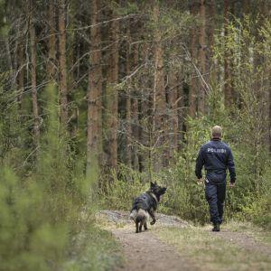 Polis Ari Pynssi med polishunden Cama går längs en skogsväg