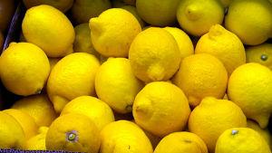 Sitruunat kaupan hyllyssä.