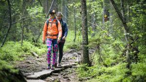 Kristiina Komulainen kävelee metsässä pitkospuuta pitkin ystävän kanssa.