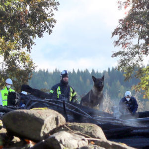 Polishundar i utredningen av branden i Kiihtelysvaara kyrka.