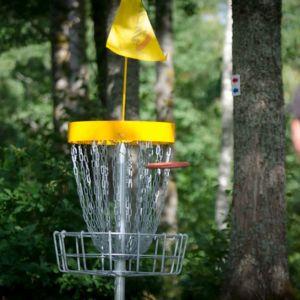 En person kastar en frisbee mot korgen.