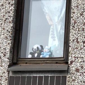 Nallar i ett fönster i Karis.