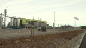 Sojafabriken i Nystad