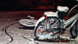 vinterhalka, cyklar